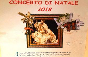 Concerto Cattedrale di Larino